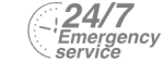 24/7 Emergency Service Pest Control in Aldgate, Monument, Tower Hill, EC3. Call Now! 020 8166 9746